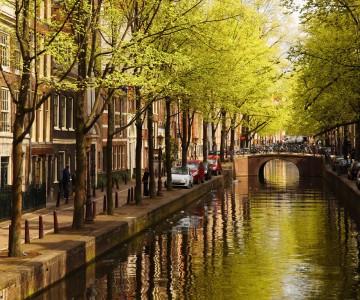 HOLANDA_Amsterdam_140572501_1100X450